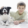 Как домашние животные нас лечат